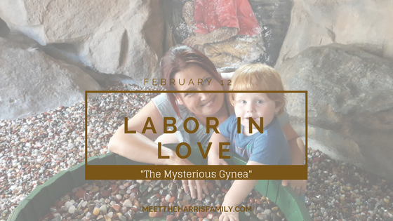 Labor in Love: The Mysterious Gynea Feature